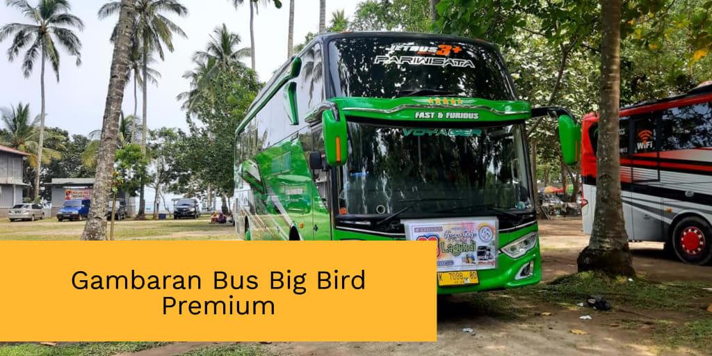 Gambaran Bus Big Bird Premium