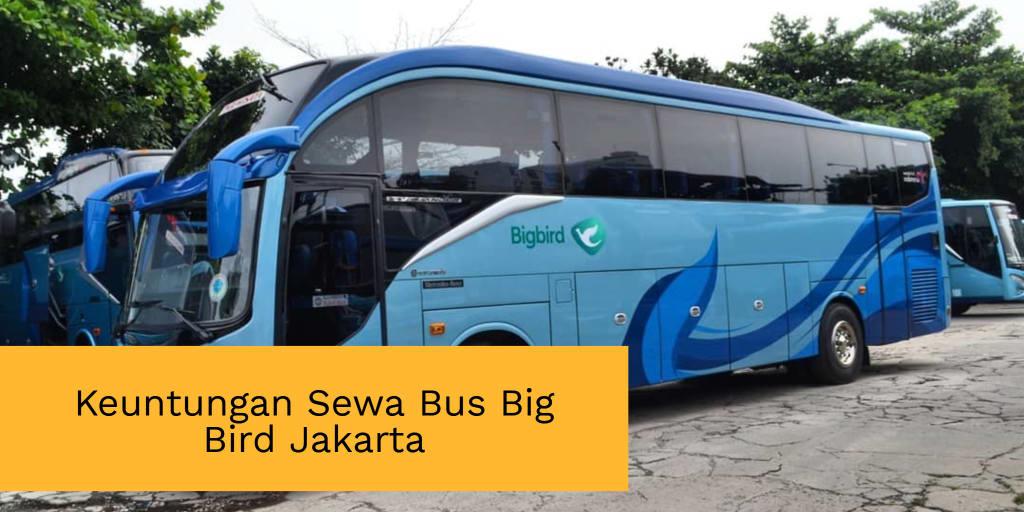 Keuntungan Sewa Bus Big Bird Jakarta Yang Didapatkan Pemesan