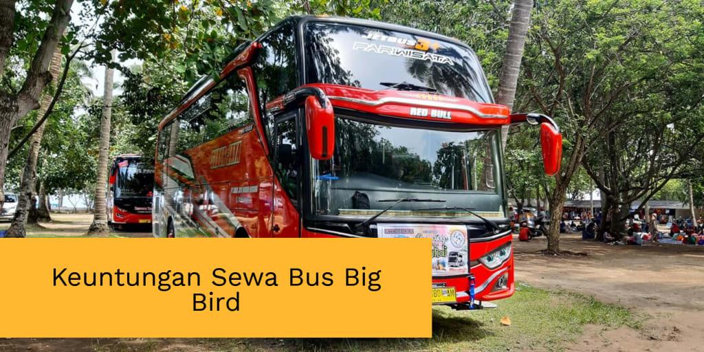 Keuntungan Sewa Bus Big Bird